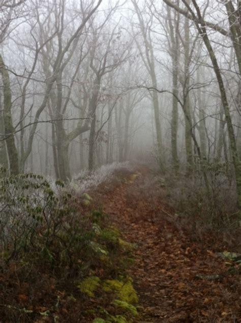 Best 25 Haunted Trail Ideas Ideas On Pinterest Haunted