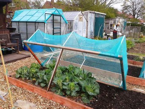 vegetable garden netting home depot garden garden