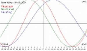 Radix Berechnen Online Kostenlos : biorhythmus berechnen rechner ~ Themetempest.com Abrechnung