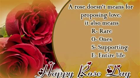 happy rose day  sms wishes   whatsapp