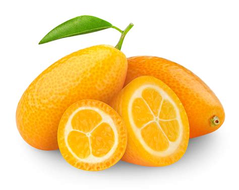 cuisine avec piano de cuisson le kumquat c est quoi stoves