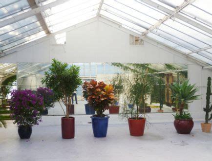 home botanikum muenchen