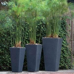 1000+ images about large pots on Pinterest
