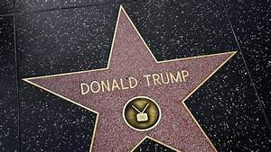 Young Trump supporter cleans Trump's defaced Hollywood ...