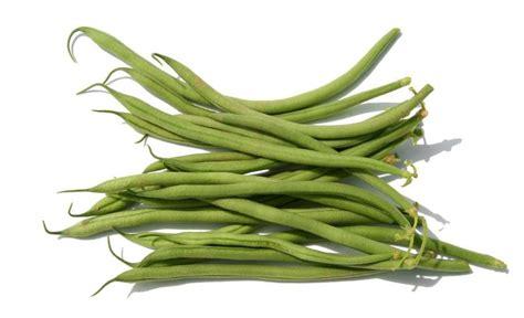 haricot vert haricots verts lyonnaise