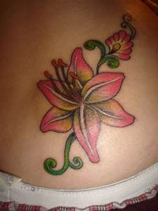 Free Tiger Lily Designs Free Pictures Lily Flower Best Flower
