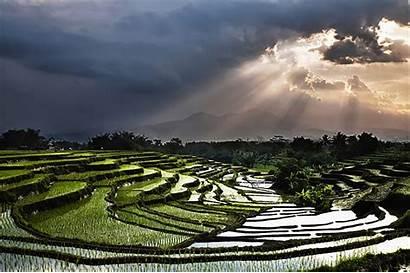 Indonesia Nature Awards Sony Bambang National Wirawan