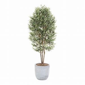 Olivenbaum Im Topf : k nstlicher olivenbaum 150 cm hoch ebay ~ Michelbontemps.com Haus und Dekorationen
