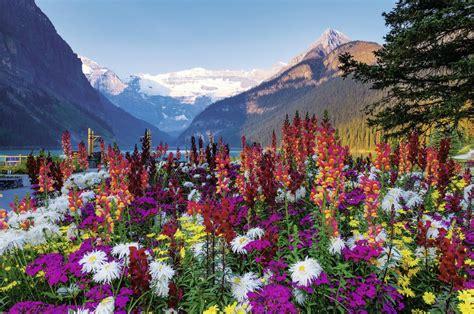 montagnes fleuries 3000 teile ravensburger puzzle