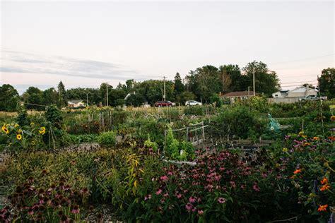 Lakeside Community Garden | Modern Locavore | Kingston ...