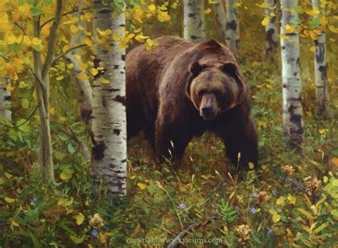grizzly bear painting  kyle sims art wildlife