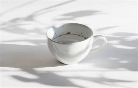Tiny Landscape In A Coffee Cup  Fubiz Media