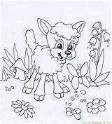 Lamb Coloring Easter Lion Lambs Mary Had Animal Sheets Printable Cartoon Fresh Getdrawings Getcolorings Coloringpages101 Popular Animals Library Clipart Coloringhome sketch template
