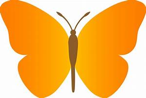 Butterfly Flying Outline Clipart | Clipart Panda - Free ...