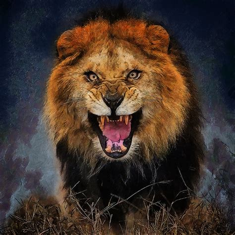 lions big cats angry animals