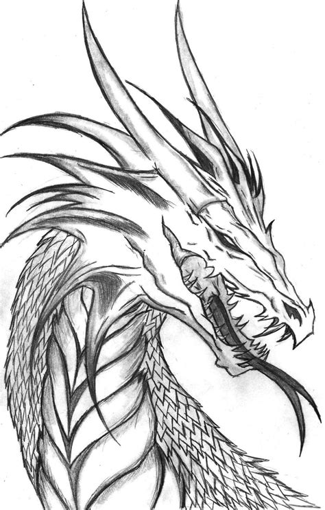 coloriages  imprimer dragon numero