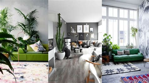 Images Of Living Room Plants by Decorate Living Room With Indoor Plants Greenery Living
