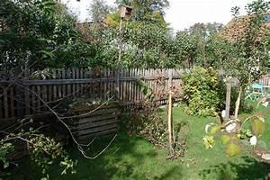 Welche Pflanzen Als Sichtschutz : garten moy auch nur um etwas mehr ruhe zu haben eignet sich ein sichtschutz ~ Whattoseeinmadrid.com Haus und Dekorationen