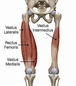 Vastus Medialis Stretch | www.pixshark.com - Images ...