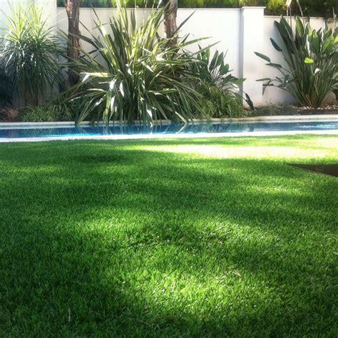 erba per giardino prato sintetico 100 effetto reale erba artificiale per