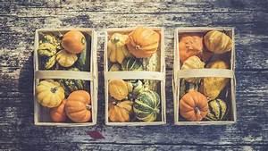 Herbstdeko Selbst Gemacht : diy coole herbst deko selbst gemacht n joy leben ~ Orissabook.com Haus und Dekorationen