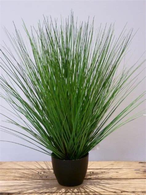 Ziergräser Im Topf by Ziergras Ab 50 Cm Kunstpflanze De