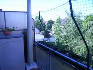 balkon katzensicher machen aber ohne in die hauswand zu With französischer balkon mit garten einzäunen katzen