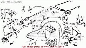 Honda Trx200 Fourtrax 200 1984  E  Usa Wire Harness