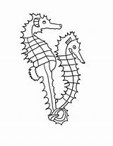 Coloring Seahorse Sharp Spines sketch template