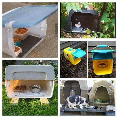 outdoor cat feeding station diy colony cat feeder tips cat