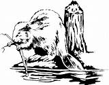 Clipart Badge Bw Coloring Critters Beaver1 Jamboree Library Template sketch template