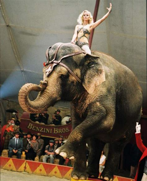 join  circus    workout telegraph