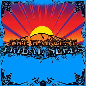Tribal Seeds – Herby Lyrics | Genius Lyrics