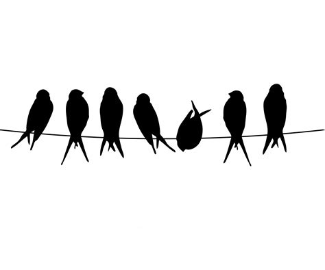 clipart birds on a wire 20 free Cliparts | Download images ...