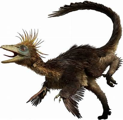 Troodon Dinosaurs Hesperonychus Facts Dinosaur Walking Dino