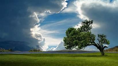 Lonely Trees Tree Wallpapers Chmury Drzewo Jezioro