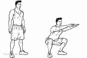 Air Squats  U2013 Workoutlabs Exercise Guide