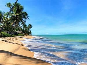 Praia De Gar U00c7a Torta Em Macei U00d3  E Os Bares Mais Legais Da Regi U00e3o