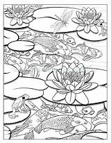 Coloring Pond Colouring Pages Koi Waterfall Drawing Adult Ponds Fish Drawings June Fishing Creatures Printable Kuvahaun Tulos Haulle Easy Getdrawings sketch template