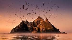 Ireland's Wild Coast | PBS  Wild