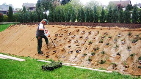 Pflanzen Für Hangbefestigung by Hangbefestigung Mit Pflanzen Bauen Im Garten Manufactum