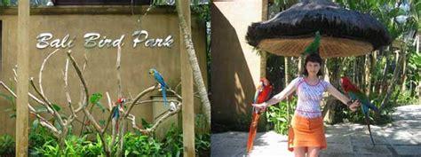 bali bird park lokasi  harga tiket masuk taman burung