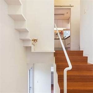 Feline, Design, Cat, Houses, Are, A, Thing
