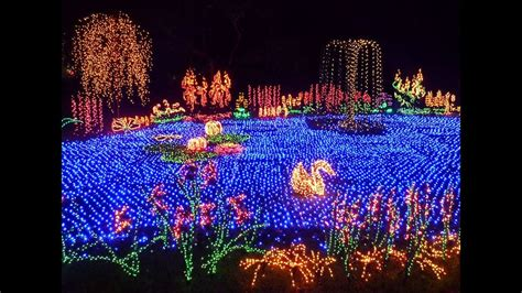botanical gardens cristmas lights the garden d lights event at the bellevue botanical garden