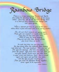 the rainbow bridge poem for cats rainbowbridge
