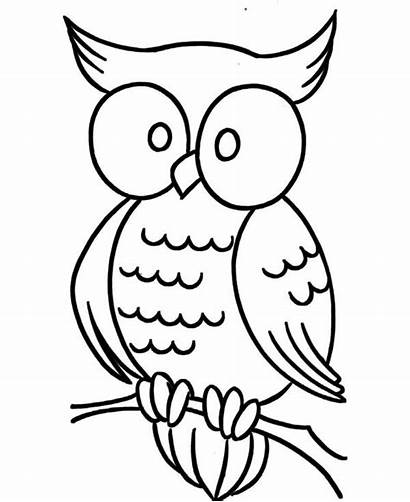 Coloring Pages Owl Eye Printable Adults Easy