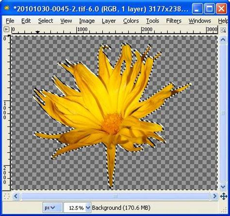 gimp remove white background removing image backgrounds gimp fuzzy select gimp tips