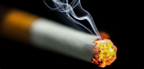 Was Hilft Gegen Zigarettenrauch by Zigarettenrauch Neutralisieren Hausmittel Keimt Tende