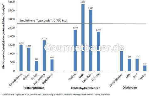 kcal bedarf berechnen kalorien pro tag kind grundumsatz