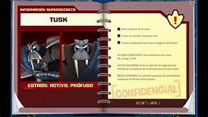Review Manual Del Agente